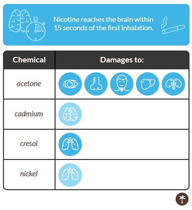 chemicals_brain