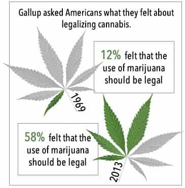 legalizing_cannibis