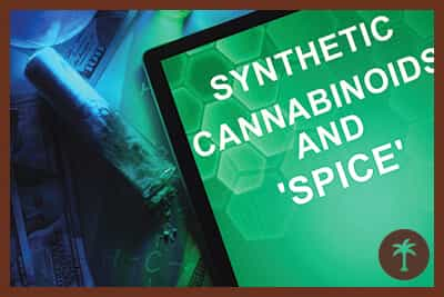 synthetic cannabinoids and spice