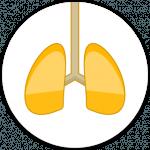 Too much codeine causes respiratory depression